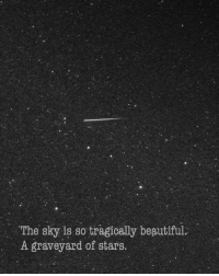 Beautiful, Stars, and Beautiful A: The sky is so tragically beautiful.  A graveyard of stars.