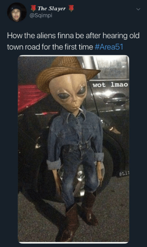 Dank, Lit, and Lmao: The Slayer  @Sqimpi  How the aliens finna be after hearing old  town road for the first time #Area51  wot lmao  @LIT Yee-Haw by beryskate MORE MEMES