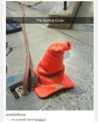 Memes, 🤖, and Hazard: The Sorting Cone  tastefully offensive:  Yer a hazard, Harry! ferribitch] This is probably one of the first HP textposts I've ever seen
