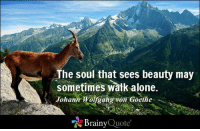 Being Alone, Memes, and Quotes: The soul that sees beauty may  sometimes walk alone.  Johann Wolfgang von Goethe  Brainy  Quote The soul that sees beauty may sometimes walk alone. - Johann Wolfgang von Goethe https://www.brainyquote.com/quotes/authors/j/johann_wolfgang_von_goeth.html #wisdom #beauty #QOTD