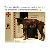 Turn on my post notifications and show me proof for a follow 💕: The special effects makeup used on this dog  for a Resident Evil movie is incredible  @w Turn on my post notifications and show me proof for a follow 💕
