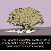 Memes, 🤖, and Creature: The Squonk is a mythical creature that is  so ugly, that it hides from plain sight and  spends most of its time weeping. me