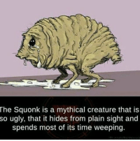 Memes, Ugly, and Animal: The Squonk is a mythical creature that is  so ugly, that it hides from plain sight and  spends most of its time weeping. This is my spirit animal @_tristan_page_ ~Matt