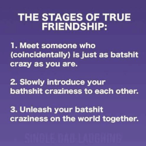 craziness: THE STAGES OF TRUE  FRIENDSHIP:  1. Meet someone who  (coincidentally) is just as batshit  crazy as you are.  2. Slowly introduce your  bathshit craziness to each other.  3. Unleash your batshit  craziness on the world together.  SINDLE DAD LAUGHINE