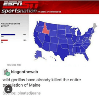 ( ͡° ͜ʖ ͡°) (Credit tagged) clean meme cleanmeme cleanmemes lol laughoutloud funny laughing laughinguntilicry laugh crying hilarious hahaha haha ha 😂 🤣 relatable wow omg used common stolen borrowed joking joker joke maymays maymay: THE STATES OF SPORTSNATION  Are you afraid of wild  gorillas?  c ん  Yes  32%  No  TOTAL VOTES 7,765  blogontheweb  wild gorillas have already killed the entire  population of Maine  Source: pleatedjeans ( ͡° ͜ʖ ͡°) (Credit tagged) clean meme cleanmeme cleanmemes lol laughoutloud funny laughing laughinguntilicry laugh crying hilarious hahaha haha ha 😂 🤣 relatable wow omg used common stolen borrowed joking joker joke maymays maymay
