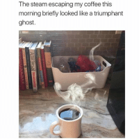 😹: The steam escaping my coffee this  morning briefly looked like a triumphant  ghost. 😹