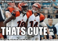 What a win for the Bengals today against the Steelers! Bengals clinched their playoff spot and the Steelers are eliminated from playoff contention!