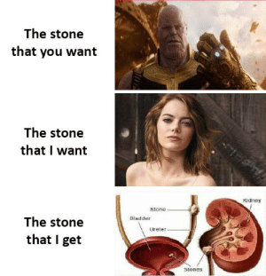 meirl by PharMercyPH CLICK HERE 4 MORE MEMES.: The stone  that you want  The stone  that I want  Kidney  Stone  The stone  Bladder  Ureter.  that I get  Stones meirl by PharMercyPH CLICK HERE 4 MORE MEMES.