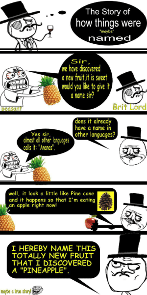 "darthlampman:  3 am sleeplessly thinking about this.: The Story of  how things were  ""maybe""  named  Sir,  we have discovered  a new fruit,it is sweet  would you like to give it  a name sir?  Brit Lord  peasant  does it already  have a name in  other languages?  Yes sir,  almost all other languages  calls it: ""Ananas"".  well, it look a little like Pine cone  and it happens  apple right now!  so that I'm eating  an  I HEREBY NAME THIS  TOTALLY NEW FRUIT  THAT I DISCOVERED  A ""PINEAPPLE"".  maybe a true storyl darthlampman:  3 am sleeplessly thinking about this."