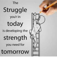 Invest in yourself! No one can ever take that away from you! Tag someone!👇🏼 codysperber cleverinvestor motivation mindset: The  Struggle  you'r in  today  is developing the  d  strength  you need for  tomorrow Invest in yourself! No one can ever take that away from you! Tag someone!👇🏼 codysperber cleverinvestor motivation mindset