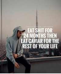 THE SUCCESS HUB  I IN STA GRAM  EAT SHIT FOR  24 MONTHS THEN  EAT CAVIAR FOR THE  REST OF YOUR LIFE Sacrifice for a better future