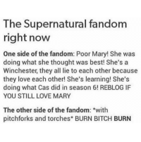 My opinions about Mary are controversial..idk which side I'm on but tbh she has annoyed me a lot this season . . . If you guys argue in the comments im legit going to turn off comments..please dont.: The Supernatural fandom  right now  One side of the fandom: Poor Mary! She was  doing what she thought was best! She's a  Winchester, they all lie to each other because  they love each other! She's learning! She's  doing what Cas did in season 6! REBLOGIF  YOU STILL LOVE MARY  The other side of the fandom: *with  pitchforks and torches* BURN BITCH BURN My opinions about Mary are controversial..idk which side I'm on but tbh she has annoyed me a lot this season . . . If you guys argue in the comments im legit going to turn off comments..please dont.