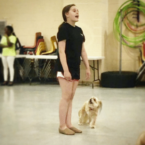 "Memes, Annie, and Tomorrow: The sweetest moment at 'Annie' rehearsals...  She's belting out ""Tomorrow, tomorrow"" and I'm hanging on every word. ❤️ ⭐️⭐️⭐️⭐️⭐️⭐️⭐️  #Annie #theatre #broadway #cyt #tomorrow #musicaltheatre  #showdog #doglove"