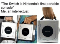 "Switch, The Switch, and Portable: ""The Switch is Nintendo's first portable  console""  Me, an intellectual:"