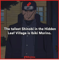 Memes, 🤖, and Hidden: The tallest Shinobi in the Hidden  Leaf Village is Ibiki Morino.  8Anime Woah😎
