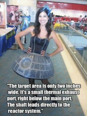 "Target, Port, and Shaft: The target area is only two inches  wide. it's a small thermal exhaust  port right below the main port  The shaft leads directly to the  reactor system."" Stay on target!"