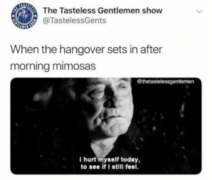 31 Hilarious Drinking Memes To Make You Laugh-06: The Tasteless Gentlemen show  ALNNER  @TastelessGents  When the hangover sets in after  morning mimosas  @thetastelessgentlemen  I hurt myself today,  to see if I still feel.  MONS  ELESS  GENTL 31 Hilarious Drinking Memes To Make You Laugh-06