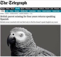 Africa, America, and Funny: The Telegraph  Home Video News  USA  World sport Finanee Comment Culture Travel Life Women  Asia China Europe Middle East Australasia Africa South America Central Asia  HOME , NEWS WORLD NEWS . NORTH AMERCA » USA  British parrot missing for four years returns speaking  Spanish  British owner reunited with lost bird only to find he doesn't speak English any more Why is this so damn funny to me?!?!? 😆 https://t.co/2FNvFgNGuv