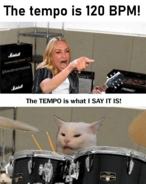 tempo: The tempo is 120 BPM!  Matehall  @bandmemes666  The TEMPO is what I SAY IT IS!