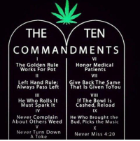 4:20: THE  TEN  COMMANDMENTS  VI  The Golden Rule  Honor Medical  Works For Pot  Patients  VII  Left Hand Rule  Give Back The Same  Always Pass Left  That Is Given ToYou  VIII  He Who Rolls It  If The Bowl Is  Cashed, Reload  Must Spark it  IX  IV  Never Complain  He Who Brought the  About Others Weed  Bud, Picks the Music  Never Turn Down  Never Miss 4:20  A Toke
