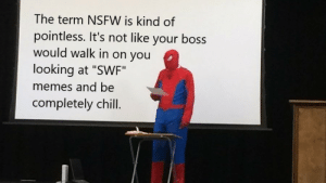 "Chill, Memes, and Nsfw: The term NSFW is kind of  pointless. It's not like your boss  would walk in on you  looking at ""SWF"".  memes and be  completely chill. It's been bugging me for a while"