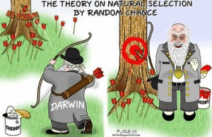 Bay of Fundie» Blog Archive » Poe's Law: THE THEORY ON NATURAL SELECTION  BY RANDOMCHANCE  ToMTHUR  HEORT  DARWIN  THEORY  e/ef 05  hallindsayerocle eam  OTOOOO Bay of Fundie» Blog Archive » Poe's Law