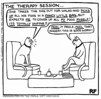 Memes, Cartoon, and Cartoons: THE THERAPY SESSION...  LSHE TAKES THE DOG OUT FOR wALKS AND PlcKs  UP ALL HIS Poos IN A FANcy LITLE BAG BUT  EXPECTS ME TO COVER UP ALL MY Poos MMSELE!  ITS TOTALLY UNFAIR  FEEL IT PAULA FEEL THAT  ANGER THIS IS GOOD WORK!  FACEBOOK.COM/ON THE PROWL CAT CARTOONS Cat Therapy... #Cats #Ontheprowl #Rupertfawcett