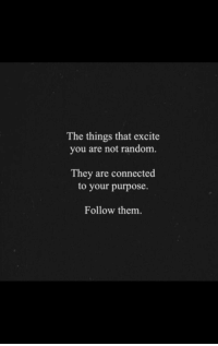 Connected, Excite, and Random: The things that excite  you are not random.  They are connected  to your purpose.  Follow them.