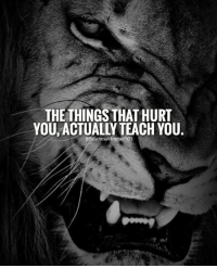What doesn't kill you only makes you stronger! businessmindset101 -: THE THINGS THAT HURT  YOU ACTUALLY TEACH YOU  BusinessMindset101 What doesn't kill you only makes you stronger! businessmindset101 -