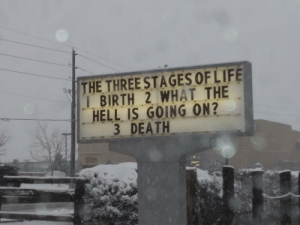Too true: THE THREESTAGES OFLIFE  IBIRTH 2 WHAT THE  HELL IS GOING ON?  3 DEATH Too true