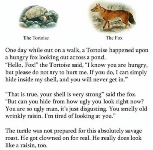 "Hello, Hungry, and Roast: The Tortoise  The Fox  One day while out on a walk, a Tortoise happened upon  a hungry fox looking out across a pond.  ""Hello, Fox!"" the Tortoise said, ""I know you are hungry  but please do not try to hurt me. If you do, I can simply  hide inside my shell, and you will never get in.""  95  ""That is true, your shell is very strong"" said the fox.  ""But can you hide from how ugly you look right now?  You are so ugly man, it's just disgusting. You smelly old  wrinkly raisin. I'm tired of looking at you.""  The turtle was not prepared for this absolutely savage  roast. He got clowned on for real. He really does look  like a raisin, too. me🐢irl"