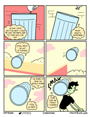 The trashcan who dreamed of being a bird: The trashcan who dreamed of being a bird