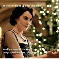 Enjoy that Christmas tree a little longer!: The tree remains up until Epiphany  You'll get used to the  things are done here  Propedy Enjoy that Christmas tree a little longer!