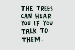 Trees, Can, and Them: THE TREES  CAN HEAR  You IF You  TALK To  THEM