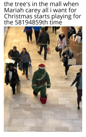 I'm straight up not having a good time.: the tree's in the mall when  Mariah carey all i want for  Christmas starts playing for  the 58194859th time I'm straight up not having a good time.