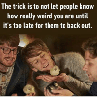 The trick is to lure them in, have then start being weird too, that's the point t of no return and you got a homie for life 👑: The trick is to not let people know  how really weird you are until  it's too late for them to back out. The trick is to lure them in, have then start being weird too, that's the point t of no return and you got a homie for life 👑
