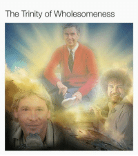 Funny, Quite, and Wholesome: The Trinity of Wholesomeness My childhood was quite wholesome