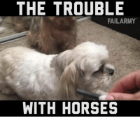Fail, Horses, and Memes: THE TROUBLE  FAIL ARMY  WITH HORSES It's been a ruff day.