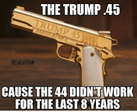 The Trumps: THE TRUMP .45  OUSAFORTRUMP  CAUSE THE 44 DIDNT WORK  FOR THE LAST 8 YEARS