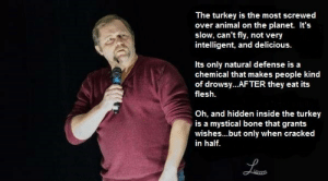 Tumblr, Animal, and Blog: The turkey is the most screwed  over animal on the planet. It's  slow, can't fly, not very  intelligent, and delicious  Its only natural defense is a  chemical that makes people kind  of drowsy...AFTER they eat its  flesh.  Oh, and hidden inside the turkey  is a mystical bone that grants  wishes...but only when cracked  in half. great-quotes:  Evolution's Practical JokeMORE COOL QUOTES!