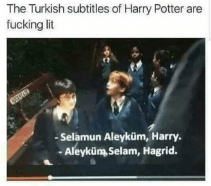 Fucking Lit: The Turkish subtitles of Harry Potter are  fucking lit  - Selamun Aleyküm, Harry  -Aleyküm Selam, Hagrid.