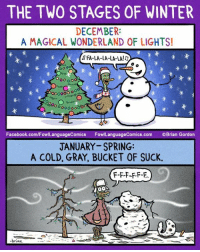 Facebook, Memes, and Winter: THE TWO STAGES OF WINTER  DECEMBER:  A MAGICAL WONDERLAND OF LIGHTS!  峯  米米  FA-LA-LA-LA-LA!  未  0oo oo0  0000 o  未  ooo0oo  Facebook.com/FowlLanguageComics FowlLanguageComics.com Brian Gordon  JANUARY-SPRING:  A COLD, GRAY, BUCKET OF SUCK.  F-F-F-F-F-R..  brias Stay warm, guys! ❄️ Bonus Panel: goo.gl/rCTvNS Check out the 20% off clearance sale on my 2018 calendar! goo.gl/uC6eKJ