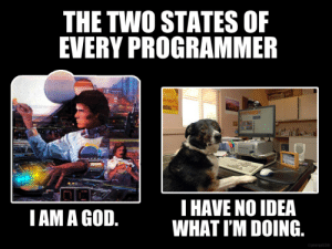 The two states of every programmer: The two states of every programmer