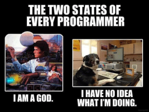 God, I Am a God, and Idea: THE TWO STATES OF  EVERY PROGRAMMER  T HAVE NO IDEA  WHAT I'M DOING.  I AM A GOD. I'm in between