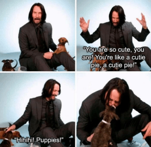 The two things we need but don't deserve, puppies and Keanu: The two things we need but don't deserve, puppies and Keanu
