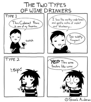 tastefullyoffensive:  by Sarah Andersen: THE TWO TYPES  OF WINE DRINKERS  TYPE 1  I love the earthy undertones  and gentle notes of violet  and blueberry..  This Cabernet Frane  favorites  is one of my  So subtly  fragront.  Swish  TYPE 2  YEP This wine  tastes like wine.  sip:  O Sarah Andersen tastefullyoffensive:  by Sarah Andersen