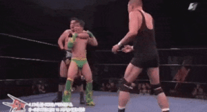 The ultimate wrestling move: The ultimate wrestling move