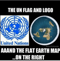 The UN FLAG AND LOGO United Nations Escientifichistorion