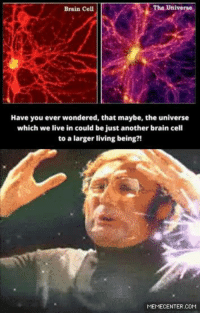 Brains, Memes, and Brain: The Universe  Brain Cell  Have you ever wondered, that maybe, the universe  which we live in could be just another brain cell  to a larger living being?!  MEMECENTER.COM What if...