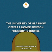 Homer Simpson, Memes, and Philosophy: THE UNIVERSITY OF GLASGOW  OFFERS A HOMER SIMPSON  PHILOSOPHY COURSE.  KNOWLEDGE ENTERTAINMENT  FACTBOLT COM D'oh! factbolt — Source: http:-www.bbc.com-news-uk-scotland-glasgow-west-37999573